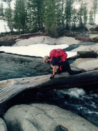 Crossing logs in the Enchantments